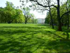 Михайловский сад (Санкт-Петербург)