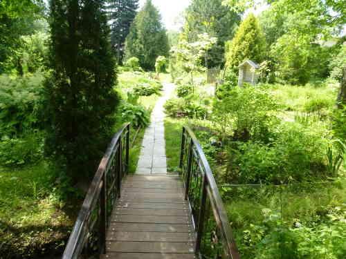 Ботанический сад ТГУ (Тверь)