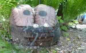 Насекомое из автомобильной шины. Ботанический сад ТГУ (Тверь)