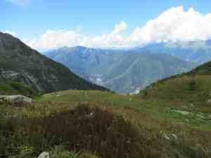 Альпийские луга (Эстосадок)