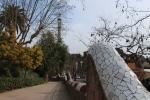 Барселона. Парк Гуэль. Стилизованная Ограда