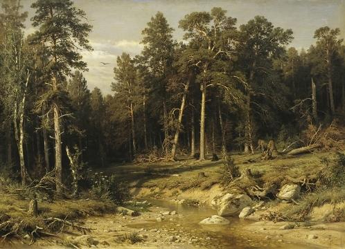 Сосновый бор. Мачтовый лес в Вятской губернии (Шишкин И.И.)