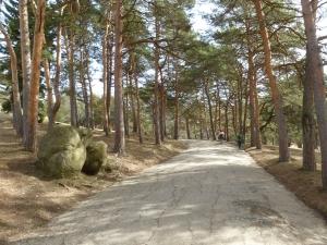 Кисловодск. Национальный парк «Кисловодский». Тренинговый маршрут