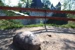 Печоры. Псково-Печерский Свято-Успенский мужской монастырь. Памятный камень