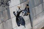 Кронштадт. Памятник рыбке колюшке