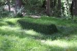 Ясная поляна. Могила Льва Толстого